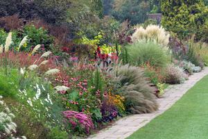 Diarmuid Gavin How Ornamental Grasses Can Bring Life To Your